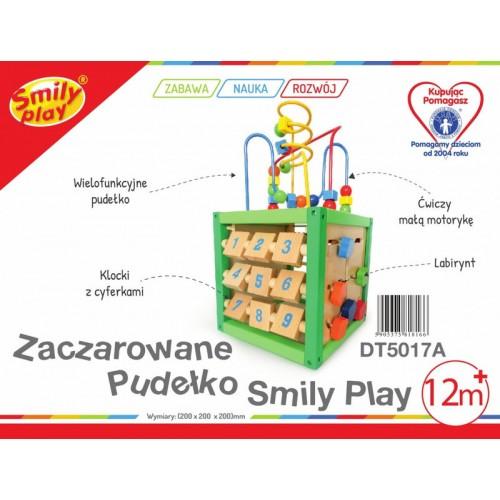 Игрушка Smily Play Деревянный куб 5 в 1, DT5017A